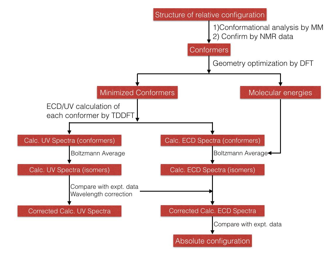 ECD Workflow