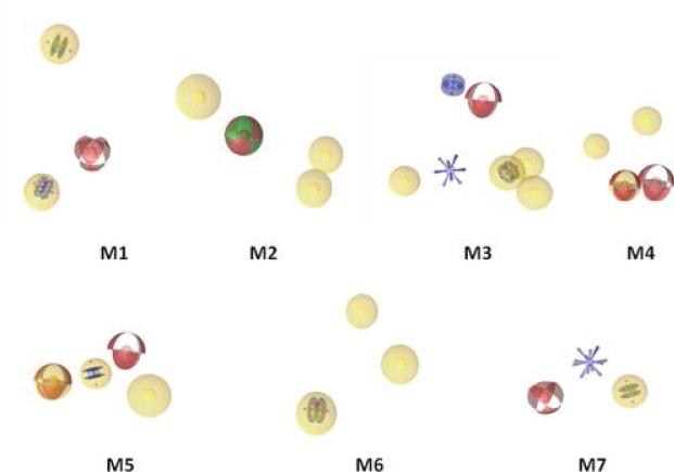 Ligandscout应用案例四 7个药效团模型