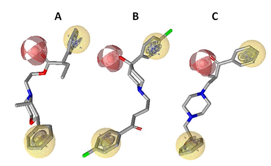 LigandScout应用案例四 活性化合物与模型叠合