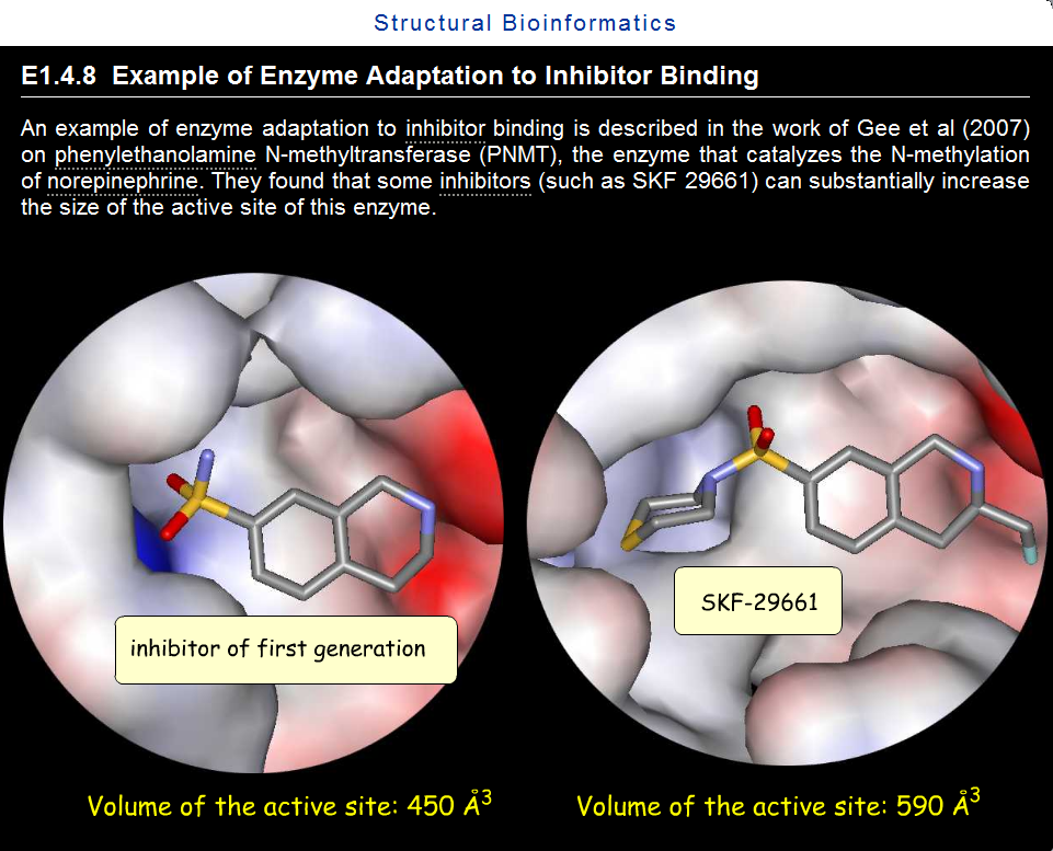 enzyme_adaptation