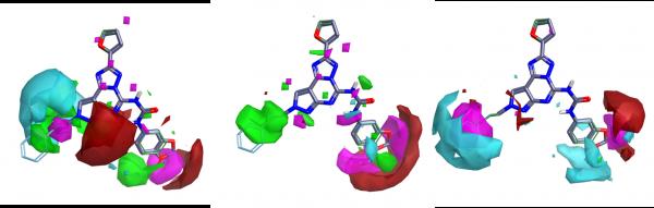 腺苷受体选择性