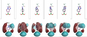 3D and 2D pictures of all side chains in the phenylalanine cluster