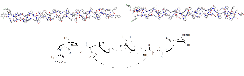 XED力场提供了苯基和五氟苯基相互作用定性和定量的正确结果