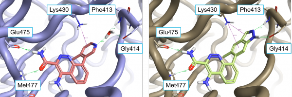 比较BTK抑制剂与蛋白静电势-墨灵格的博客