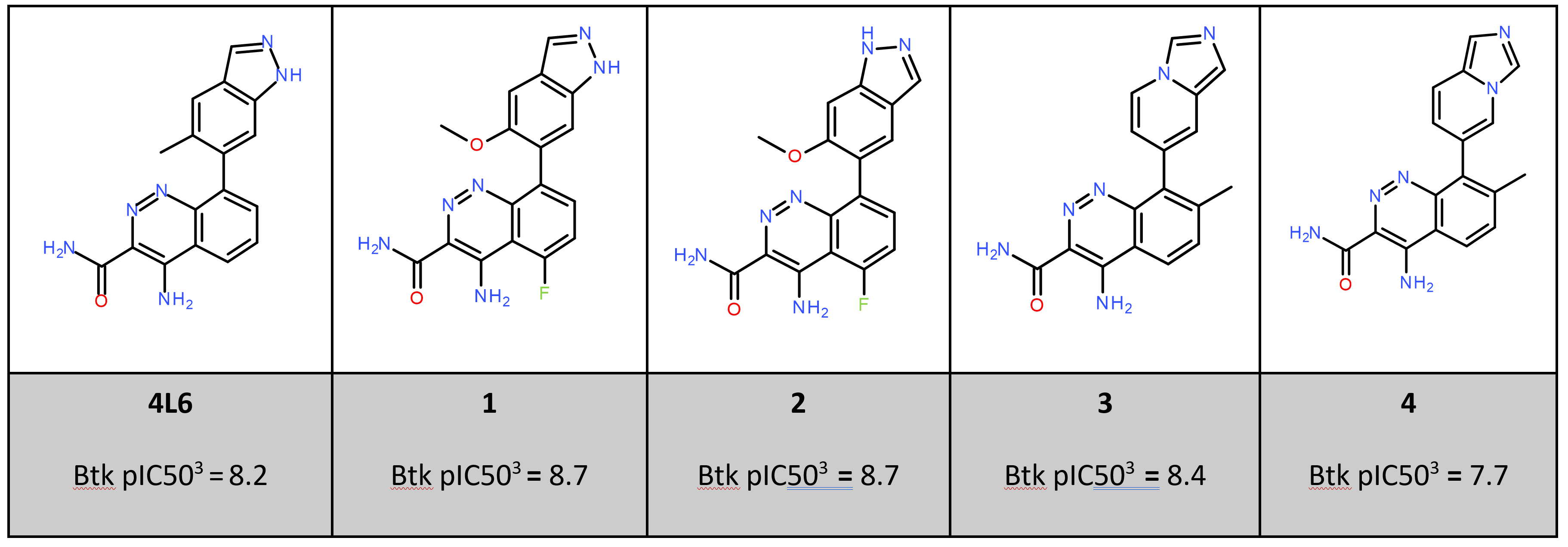 比较BTK抑制剂与蛋白静电势