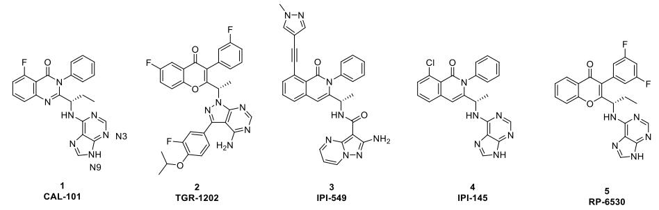 PI3Kγ与PI3K&deltaa;抑制剂