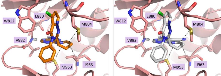 化合物6、7与PI3K-Gamma的结合模式
