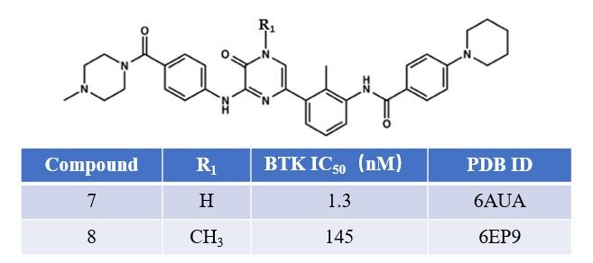 图8. BTK抑制剂化合物1与2的化学结构及其活性