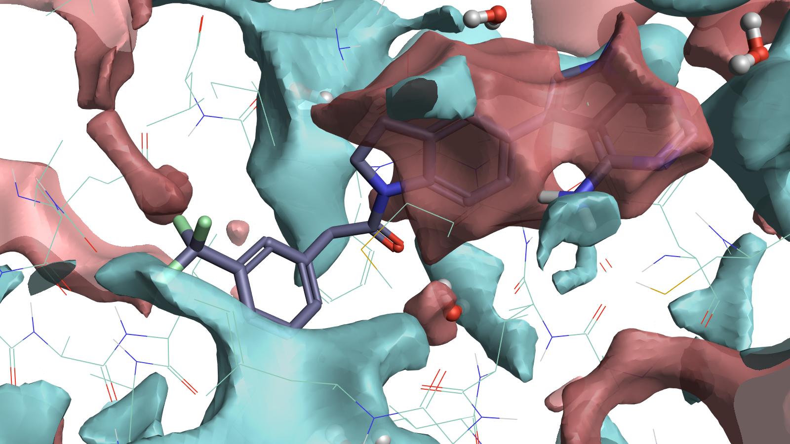 PDB 4G31完整的蛋白相互作用势映射图可以用来指导配体原子的放置